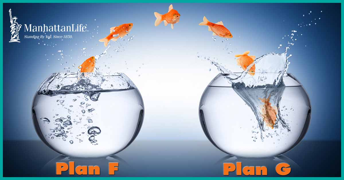 goldfish jumping from one bowl to another, plan f to plan g